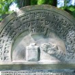Old jewish cemetery in Ozarow. Poland - Stock Photo
