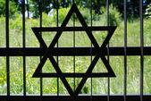 Ogrodzenia w stary cmentarz żydowski w ozarowie. polska — Zdjęcie stockowe