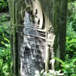 Old jewish cemetery in Ozarow. Poland - Stockfoto