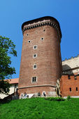 Koninklijke wawel kasteel in kraków — Stockfoto