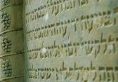 Alter jüdischer friedhof in ozarow. polen — Stockfoto