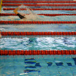 Swimming race — Stock Photo #3609638