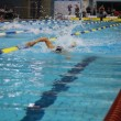 Swimming race — Stock Photo #3610401