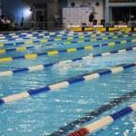 Swimming race — Stock Photo #3684860
