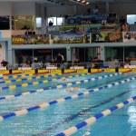 Swimming race — Stock Photo #3685073