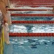 Swimming race - Stock Photo