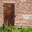 Old door — Stock Photo #3799527