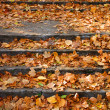 Outdoor stairway with yellow fallen leaves — Stock Photo #3878905