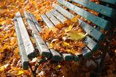 Stadtpark im Herbst — Stockfoto