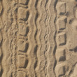 Tyre tracks on beach — Stock Photo #3883800