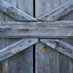 Wooden texture — Stock Photo #3887826
