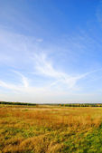 Spring Landscape — Stockfoto