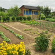 Cottage and vegetable garden - Lizenzfreies Foto