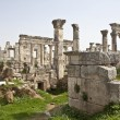 Stock Photo: Ruins of ApameSyria