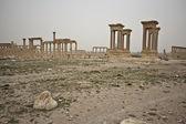 The ruins of ancient Palmyra. Syria. — Stock Photo