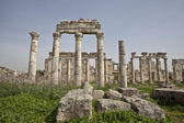 Ruins of Apamea (Afamia), Syria — Stock Photo