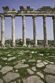 Colonnade on the main street of Apamea Syria — Stock Photo