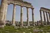 Ruins of Apamea (Afamia), Syria — 图库照片