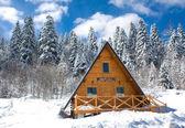 Winter cottage — Foto de Stock