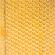 Honey Comb Background — Stock Photo #2886751