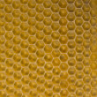 Honey Comb Background — Stock Photo #2886920