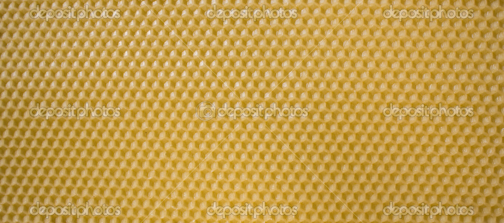 Honey Comb Background — Stock Photo #2886384