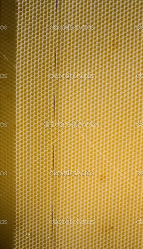 Honey Comb Background  Stock Photo #2886473