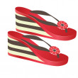 Beach footwear. Vector illustration - Stock Vector