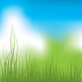 Green Grass and blue sky. Vector illustration — Stock Vector