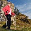 Nordic walking — Stock Photo #2995475