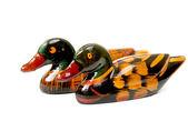 Deux canards — Photo