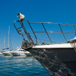 Stock Photo: Moored yachts