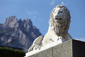 Lion King. crimea — Stock Photo