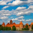Stock Photo: Trakai Castle In Lithuania