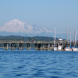 Pier and snow caped mountain — Stock Photo