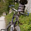 Pieniny mountains Mountain Biking — Zdjęcie stockowe
