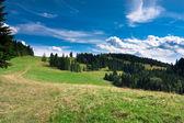 Pieniny dağ dağ bisikleti — Stok fotoğraf