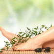Green massage — Stock Photo #2778517