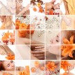 Oranje collage — Stockfoto