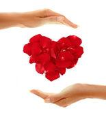 Mani con cuore — Foto Stock