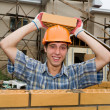 Foto Stock: Bricklayer