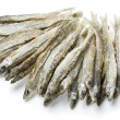 Dried salted sprat - Stock Photo