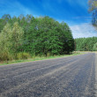Road between trees — Stock Photo