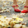 Foliage and red shoes - Stock Photo