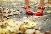 Foliage and red shoes — Stock Photo