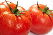 Close-up photo of two tomatoes with wate — Stock Photo