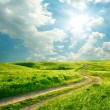 Stock Photo: Summer landscape with green grass, road and clouds