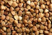 Buckwheat background — Stock Photo