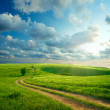 Summer landscape with green grass, road and clouds — Stock Photo #3497056