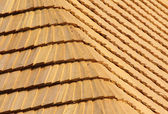 Shingles — Stock Photo